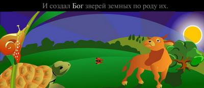 информация о канохе в мультфильме naruto
